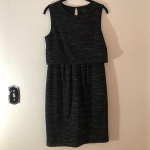 Black Ann Taylor Professional Dress white detail